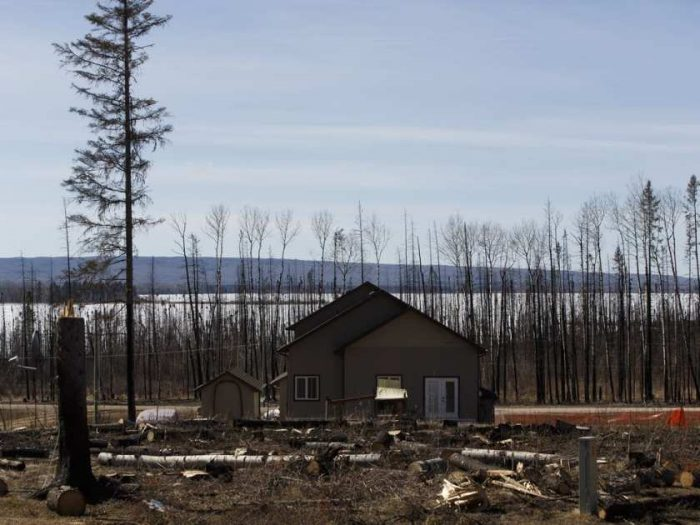 a-rebuilt-home-and-cut-down-fire-damaged-trees-from-the-2016